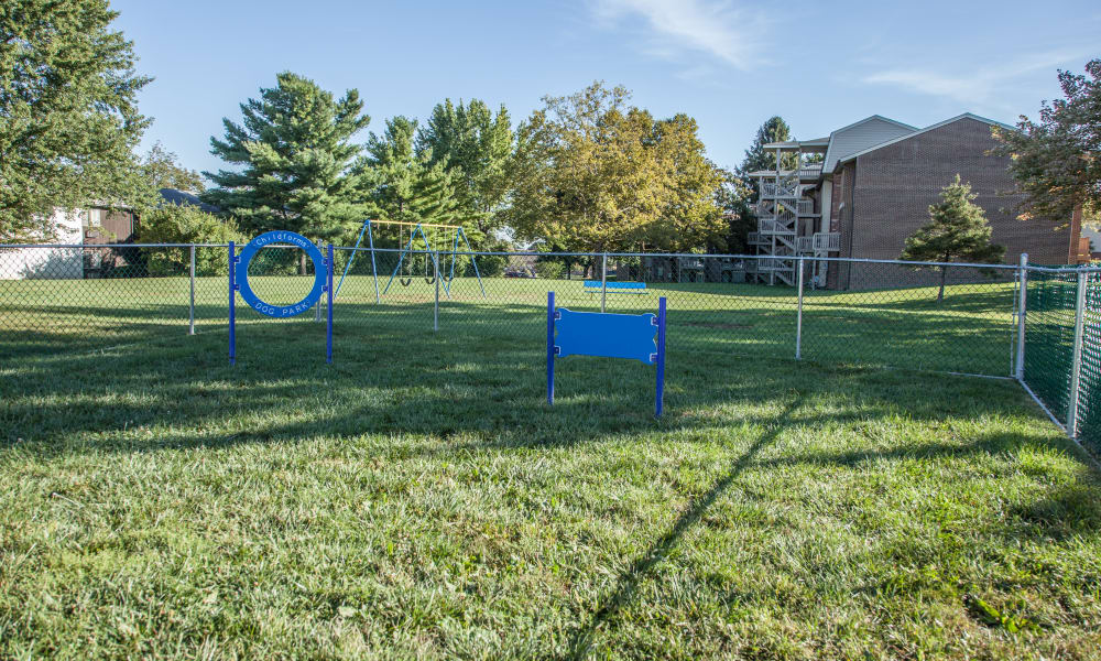 Dog park at Briarwood Apartments & Townhomes in State College, Pennsylvania