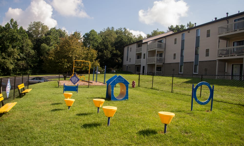Squires Manor Apartment Homes offers a dog park in South Park, PA