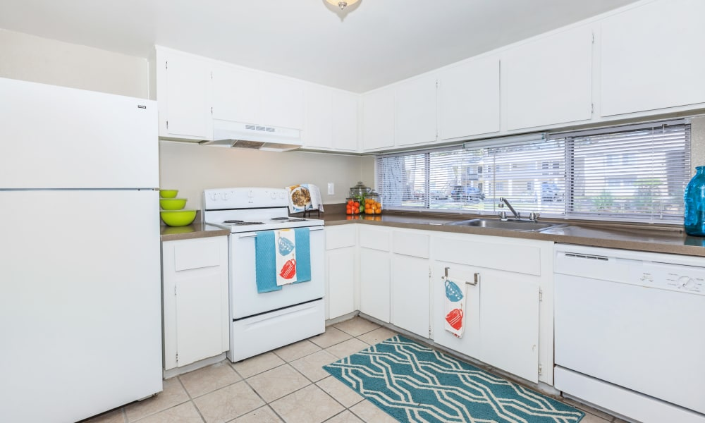 Canopy Creek in Jacksonville showcasing a well equipped kitchen