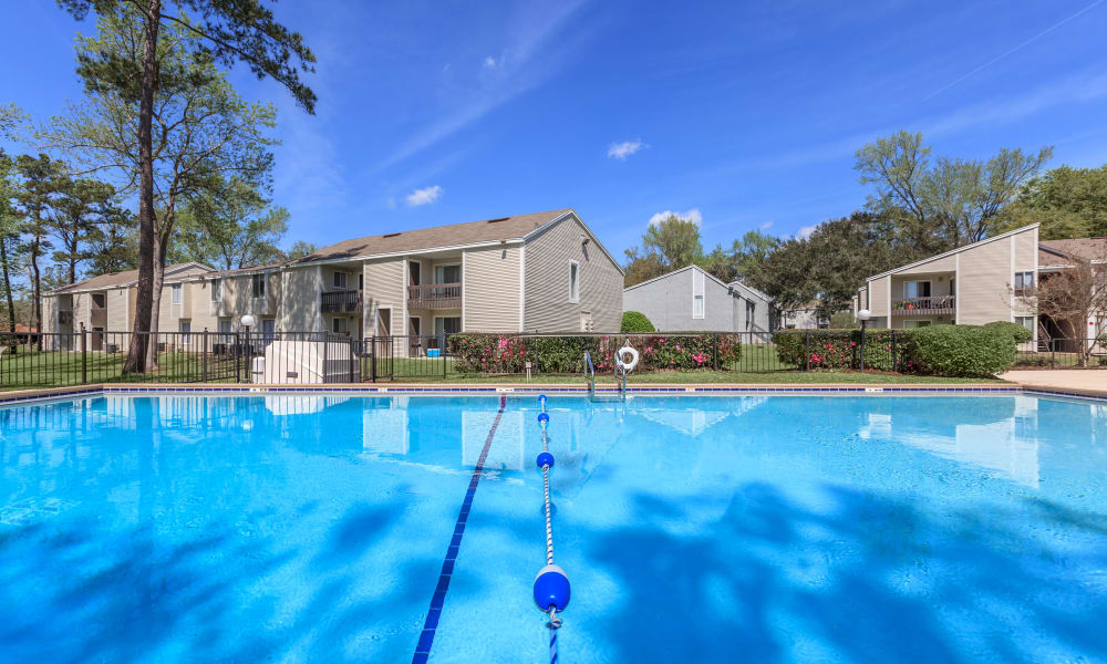 Canopy Creek swimming pool