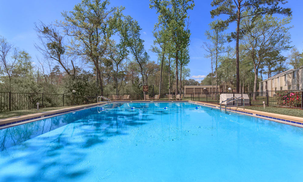 Sparkling pool at Canopy Creek in Jacksonville, FL
