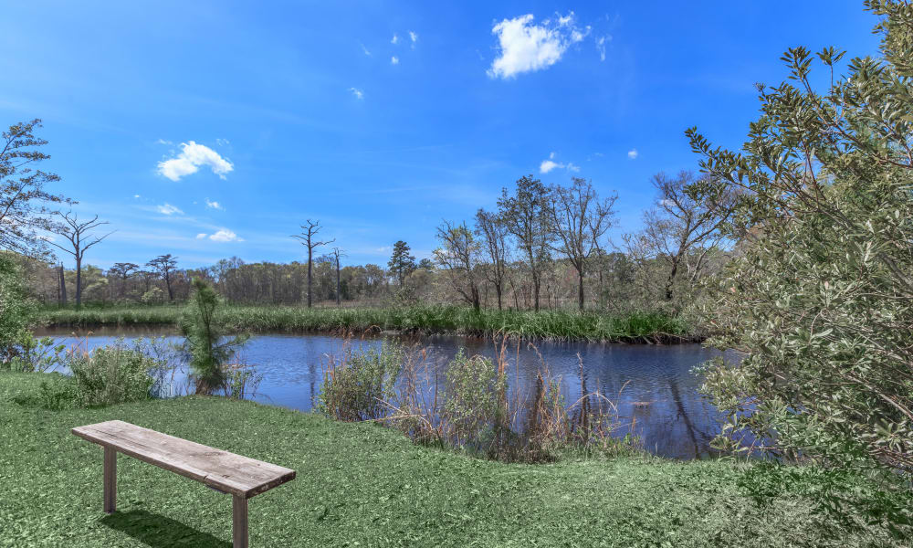 Gorgeous landscaping at Canopy Creek including a pond