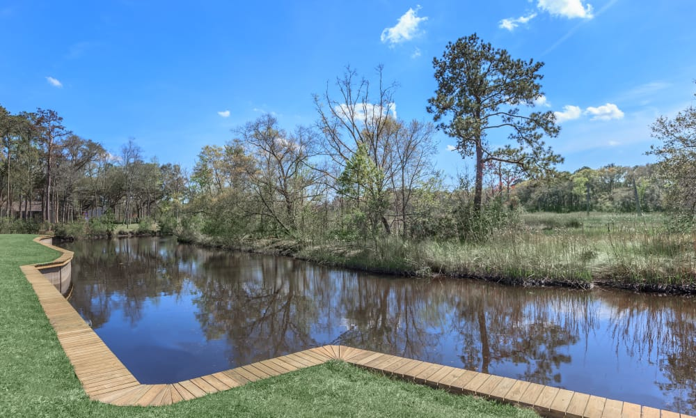 View of the pond at Canopy Creek