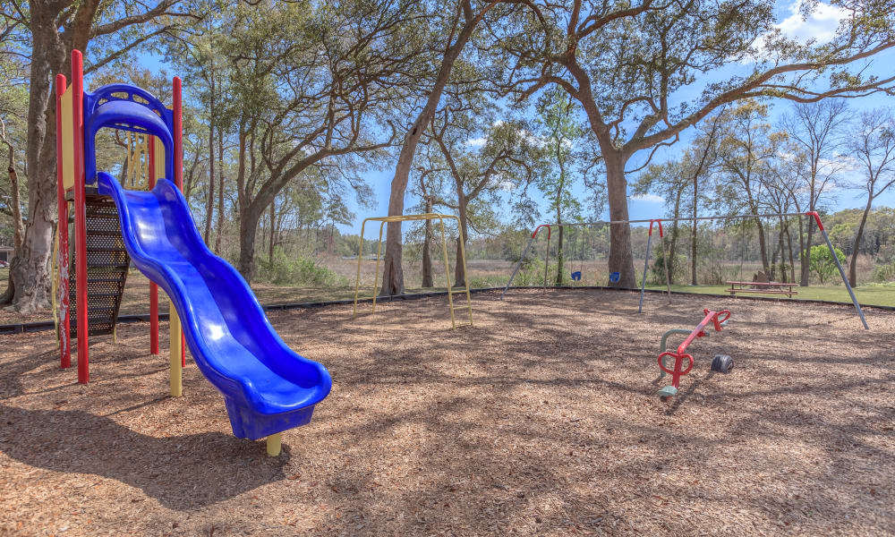 Playground at Canopy Creek in Jacksonville, FL