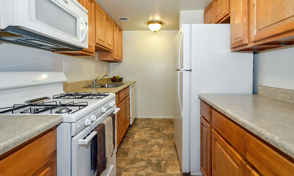 Our apartments in Philadelphia, Pennsylvania showcase a modern kitchen
