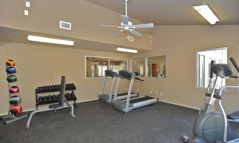 Wind Tree offers a fitness center in El Paso, Texas