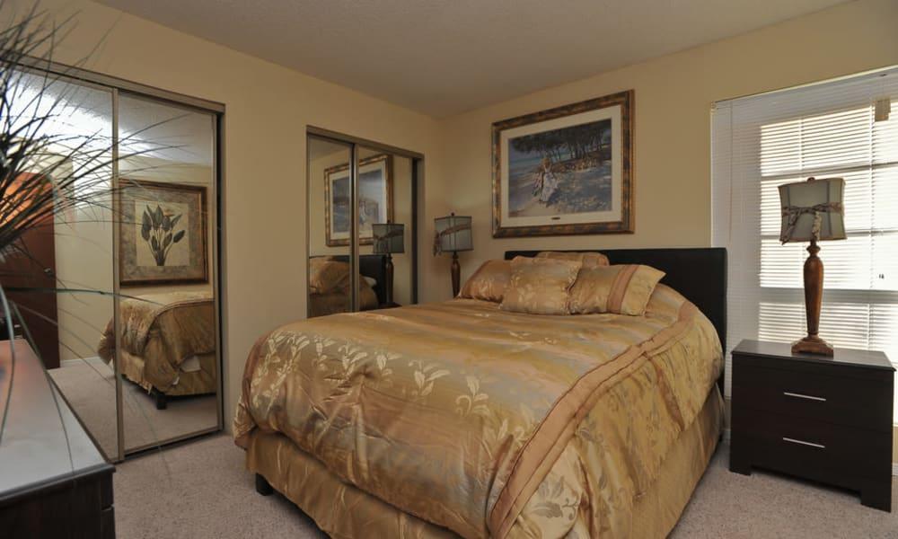 Unique bedroom at Wind Tree in El Paso, Texas