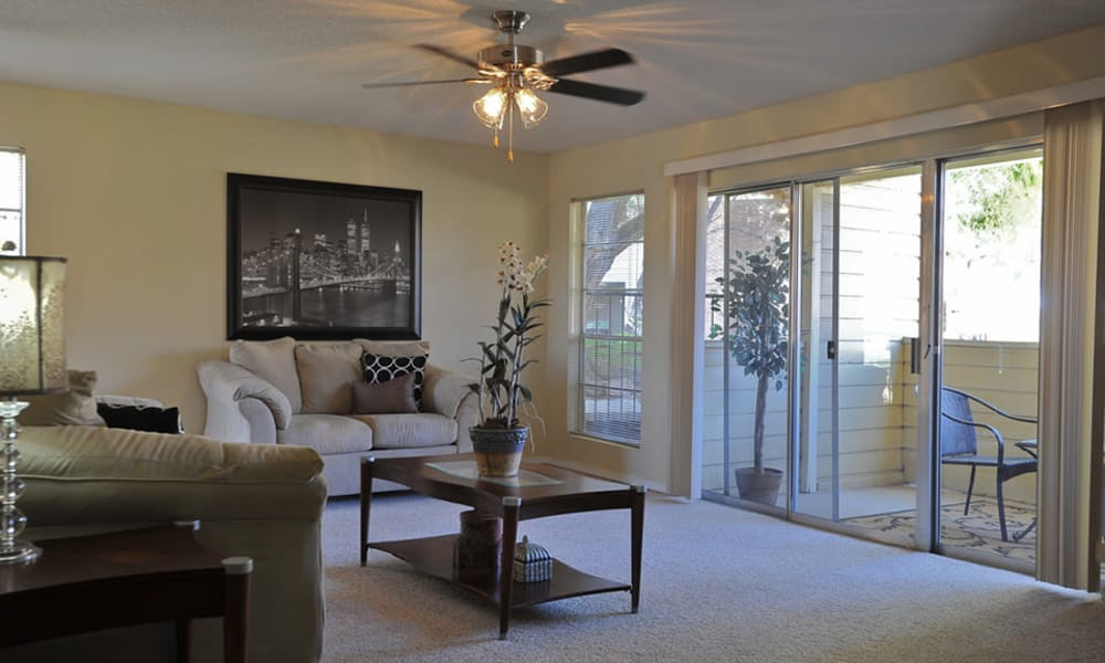 Wind Tree offers spacious floor plans in El Paso, Texas