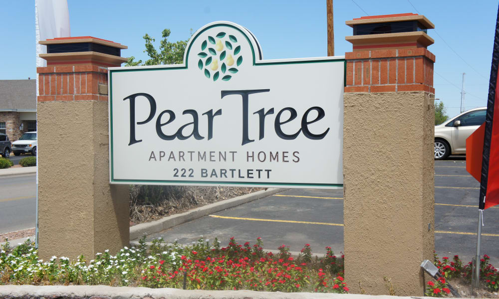 Pear Tree signage in El Paso, Texas