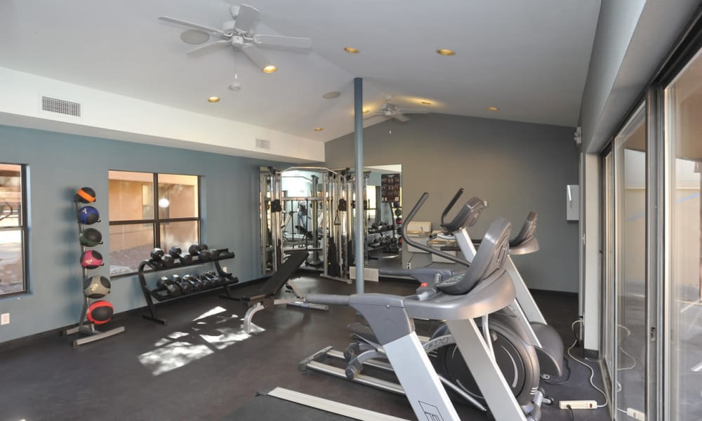 Pear Tree fitness center is well equipped