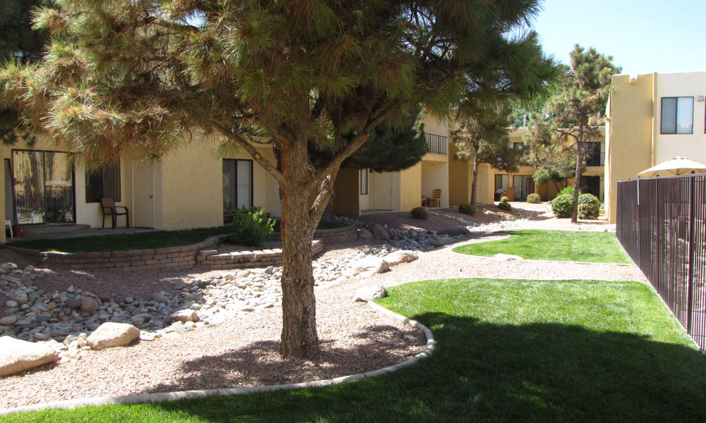 Beautiful walking paths at Sage Canyon Apartments in Albuquerque, New Mexico