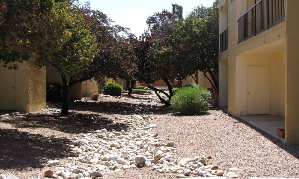 Our apartments in Albuquerque, New Mexico showcase beautiful walking paths