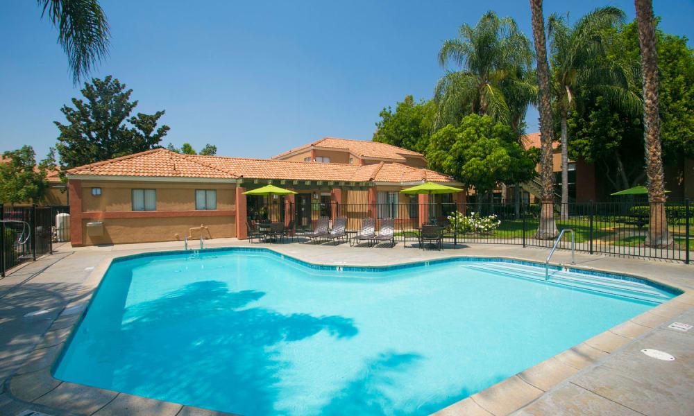 Beautiful swimming pool at Harvest Glen in Rialto, California