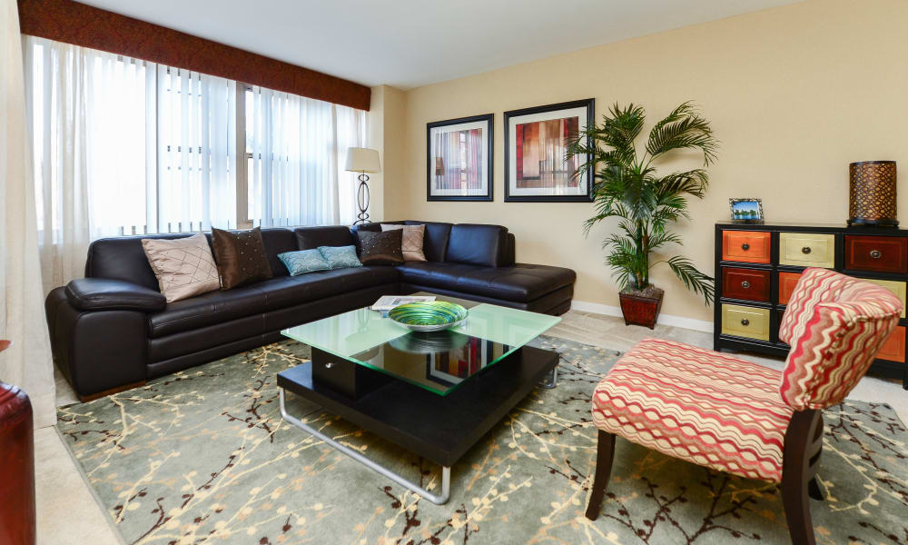 Spacious living room at apartments in Collingswood, New Jersey