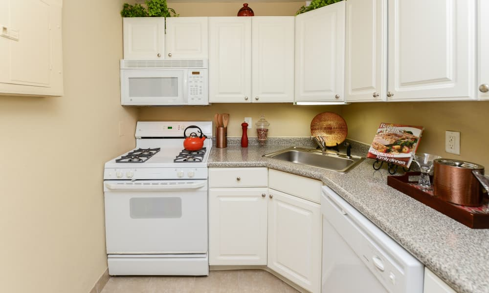 Our apartments in Collingswood, New Jersey showcase a beautiful kitchen
