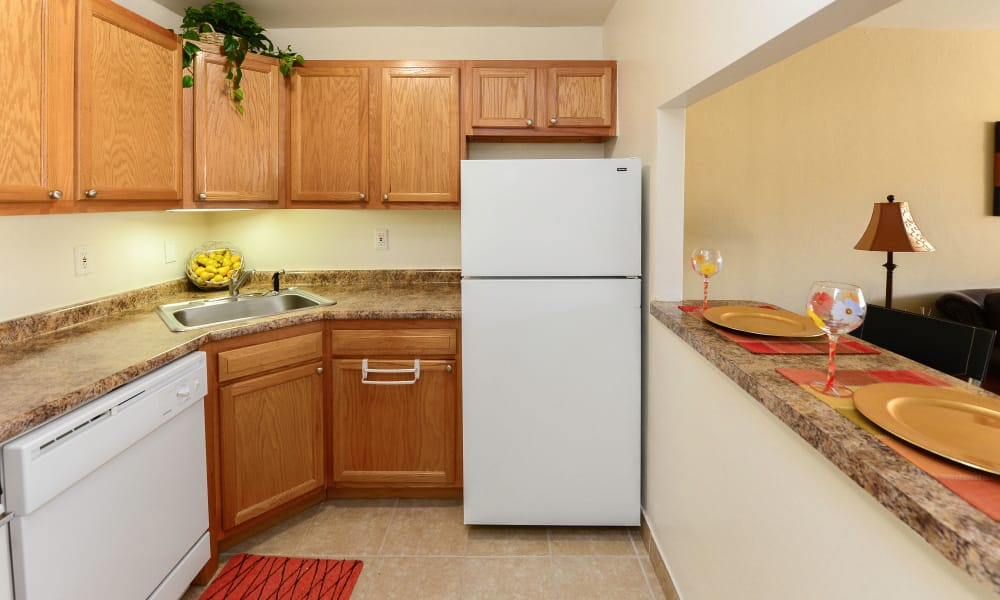 Enjoy apartments with a modern kitchen at Parkview at Collingswood Apartment Homes