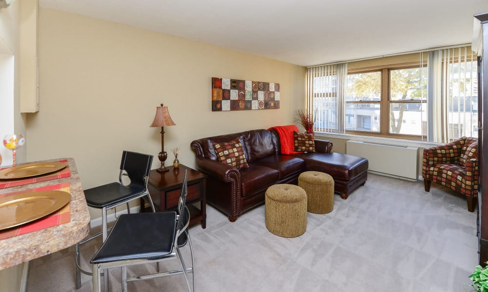 Enjoy apartments with a living room at Parkview at Collingswood Apartment Homes