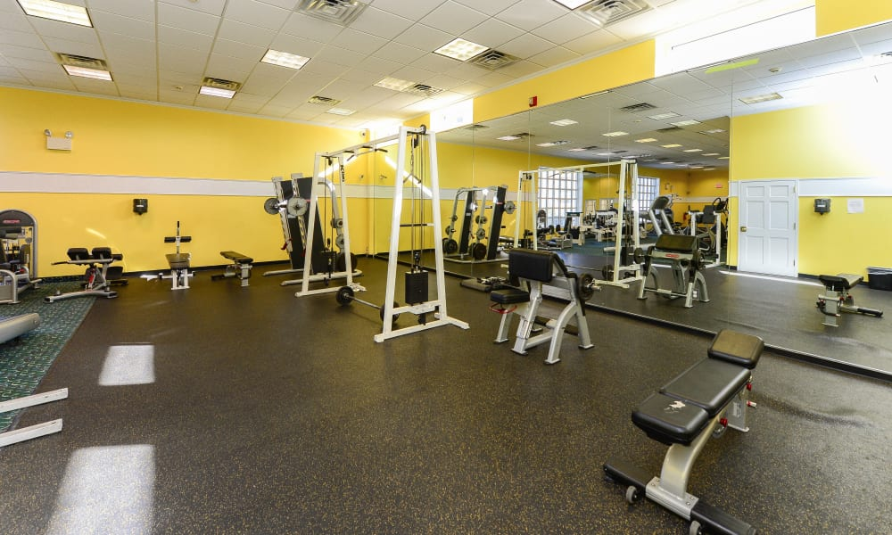 Our apartments in Collingswood, New Jersey showcase a luxury fitness center