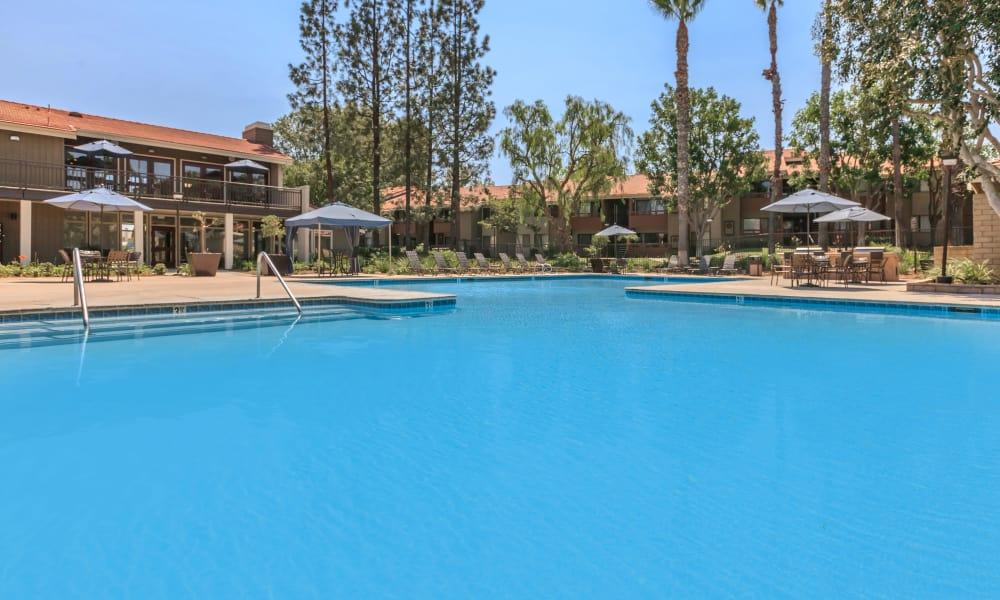 Swimming pool at Parcwood Apartments
