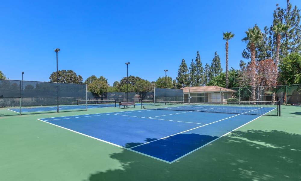 Tennis court at Parcwood Apartments