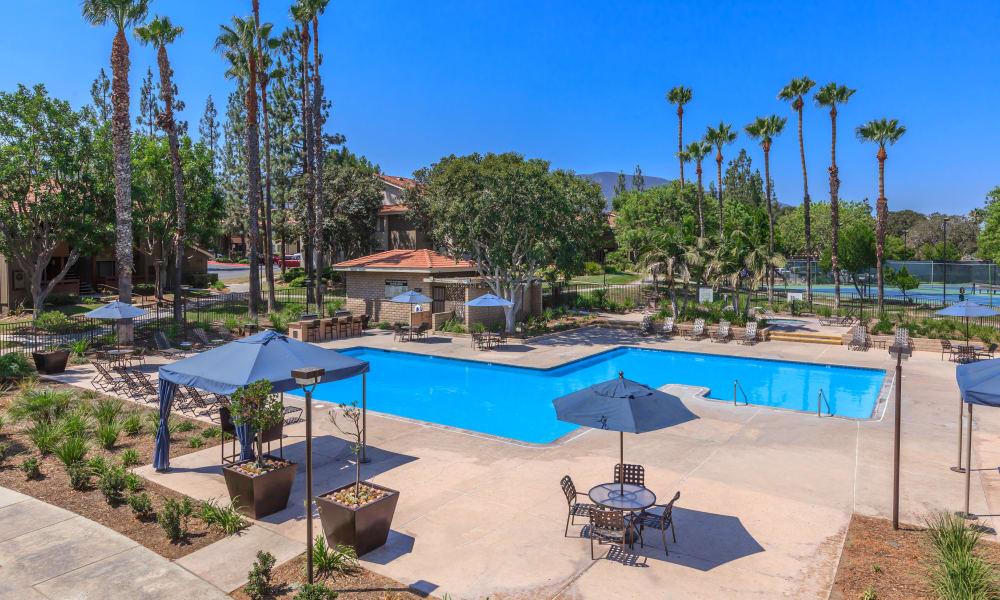 Sparkling swimming pool at Parcwood Apartments