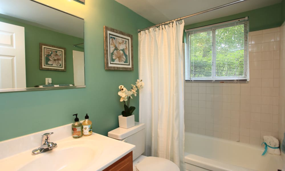 Cozy bathroom at Gwynn Oaks Landing Apartments & Townhomes in Baltimore, Maryland
