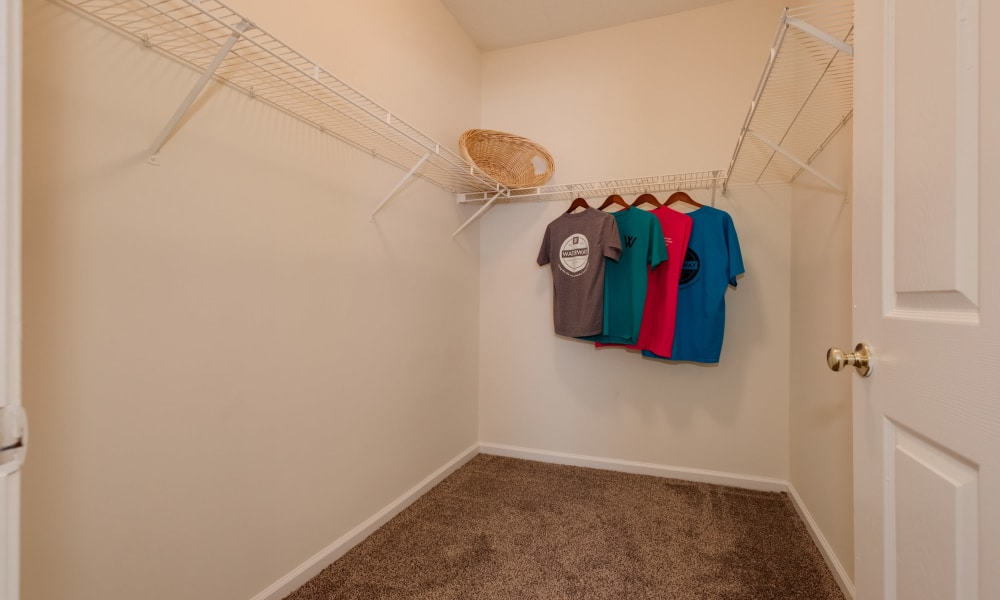 Apartments with walk-in closets in Lexington, SC