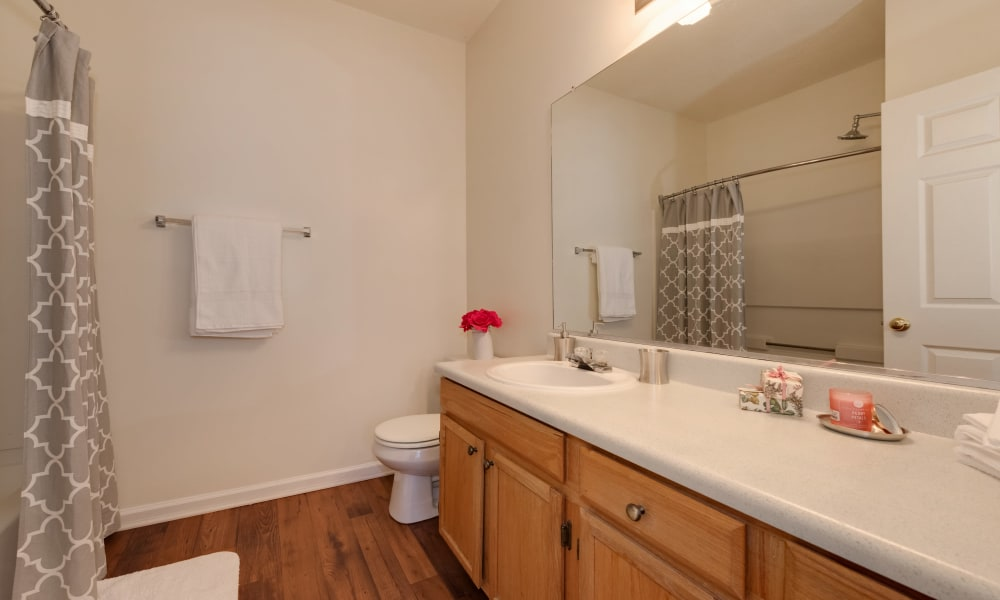 Bathroom at The Waterway Apartment Homes in Lexington, SC