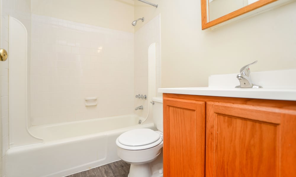 Bathroom at The Preserve at Owings Crossing Apartment Homes in Reisterstown, MD