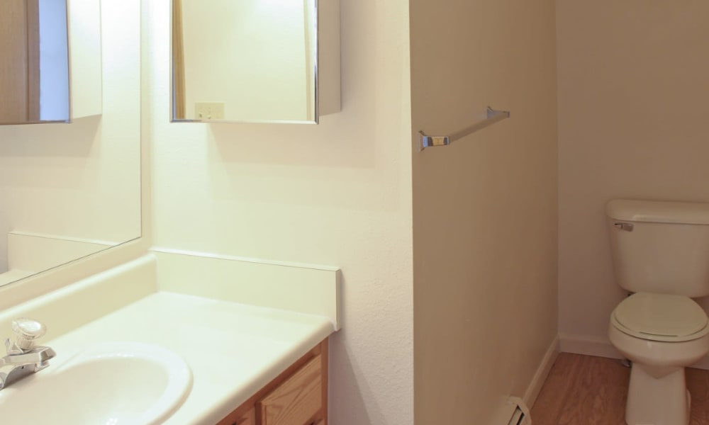 Bathroom at Mountain View Apartments