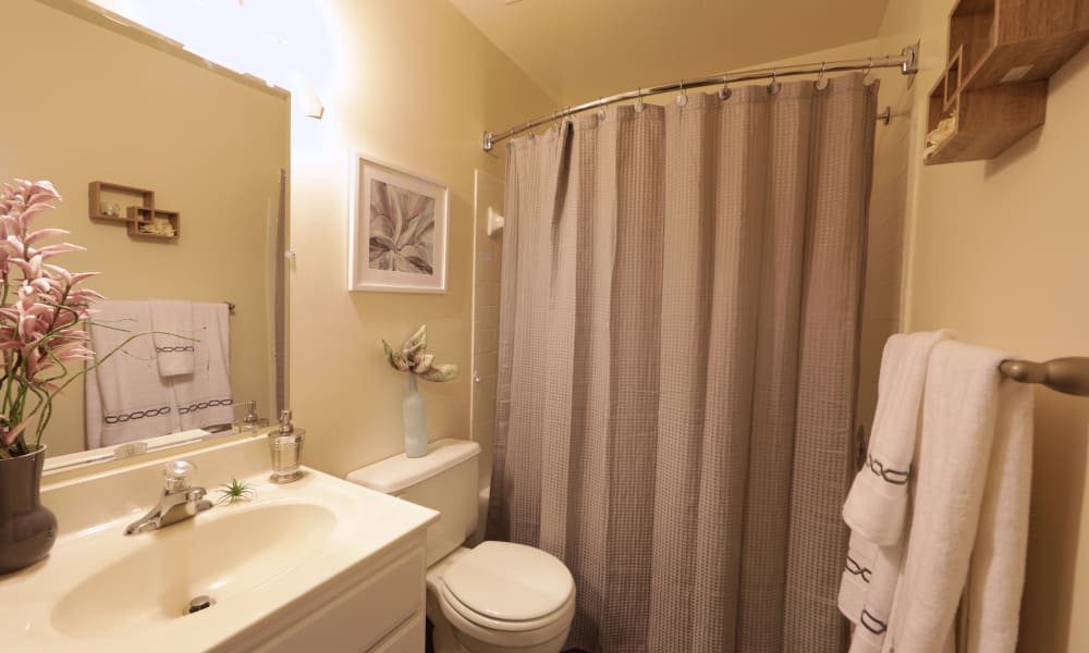 Silver Spring Station Apartment Homes offers a bathroom in Baltimore, MD