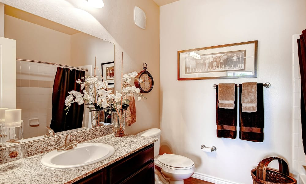 Bathroom at Peaks at Woodmen Apartments