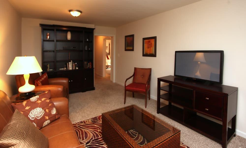 Naturally well-lit living room at apartments in Greensboro, North Carolina