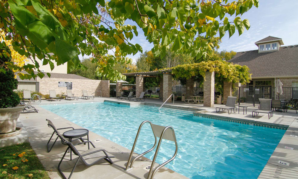 Sparkling pool at Preston Hollow Apartments