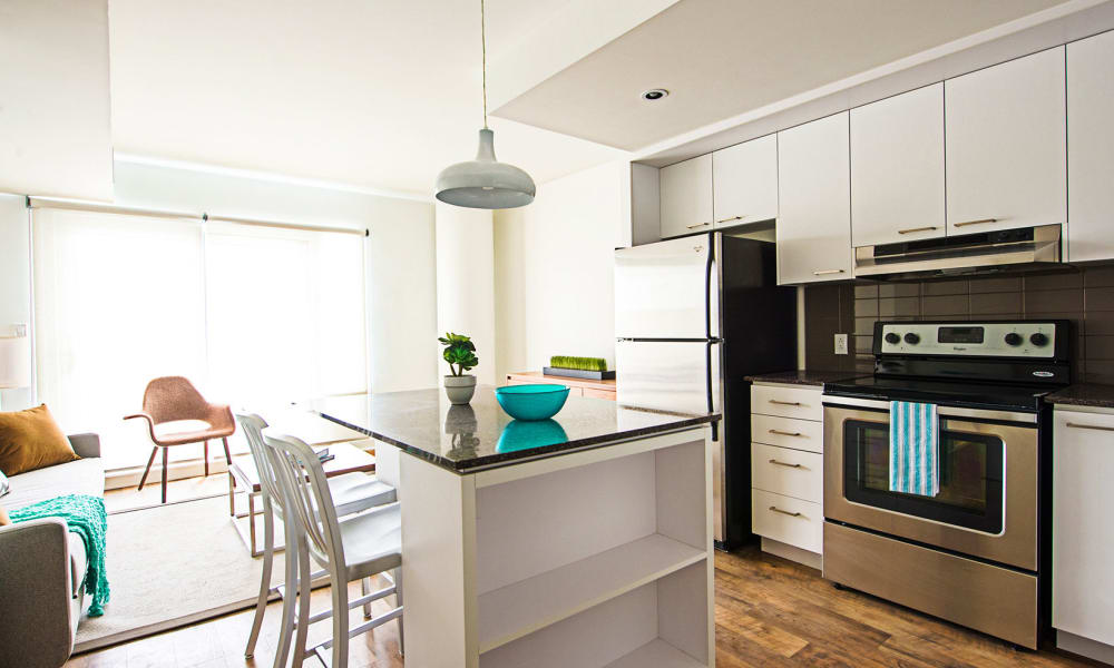 A kitchen at 19Twenty Apartments in Halifax, Nova Scotia featuring abundant natural light and stainless steel appliances