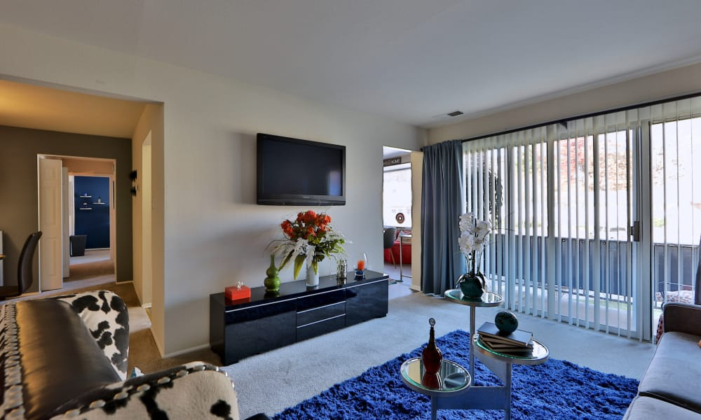 Enjoy a luxury living room at Avery Park Apartment Homes