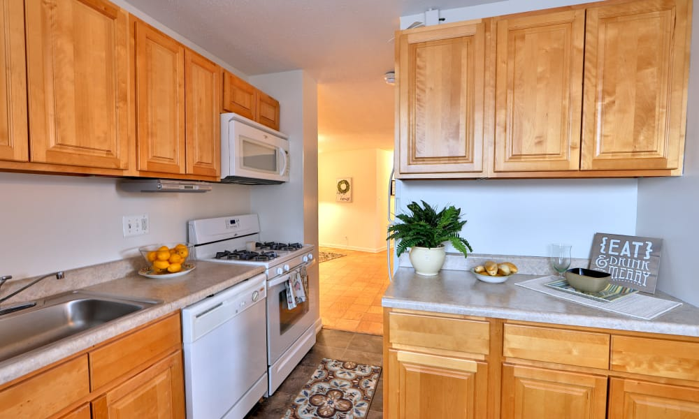 Modern kitchen at The Carlyle Apartments in Baltimore, Maryland