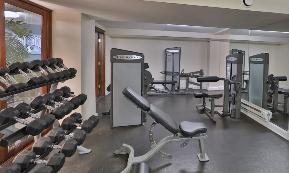 Stay healthy in the The Carlyle Apartments fitness center