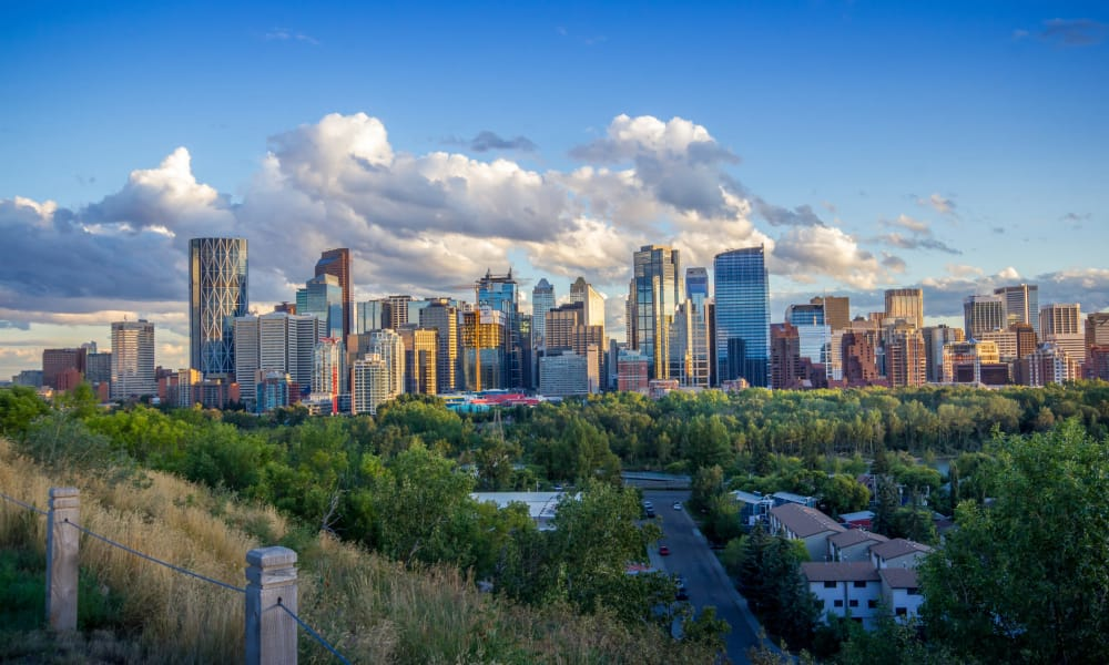 Calgary view from Rouleau