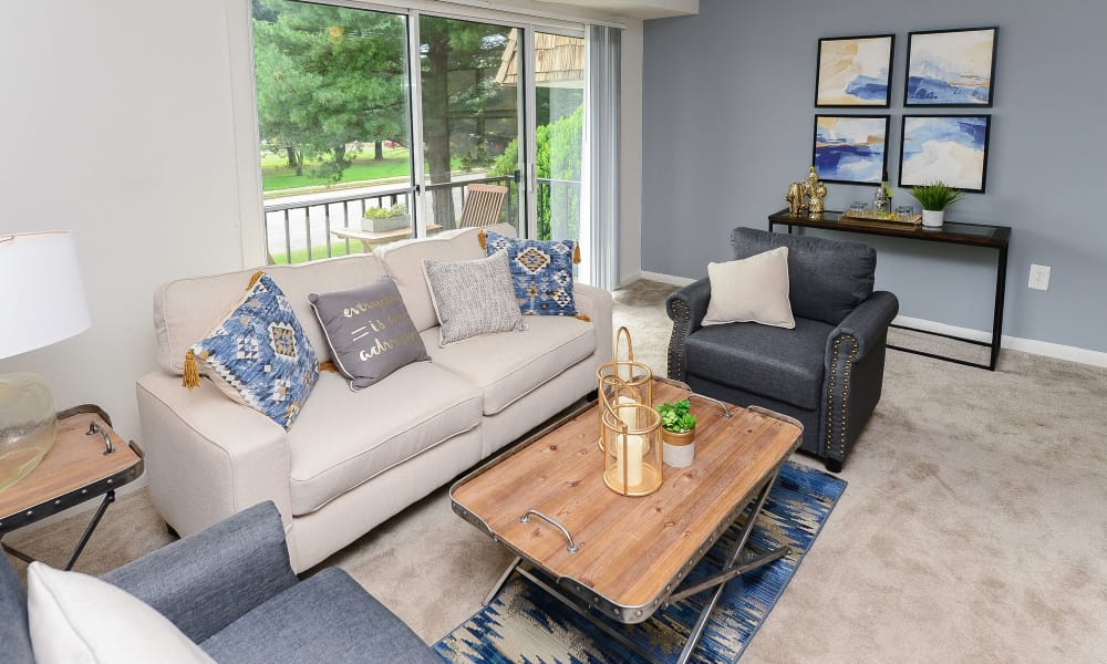 Country Village Apartment Homes offers a modern living room in Dover, Delaware