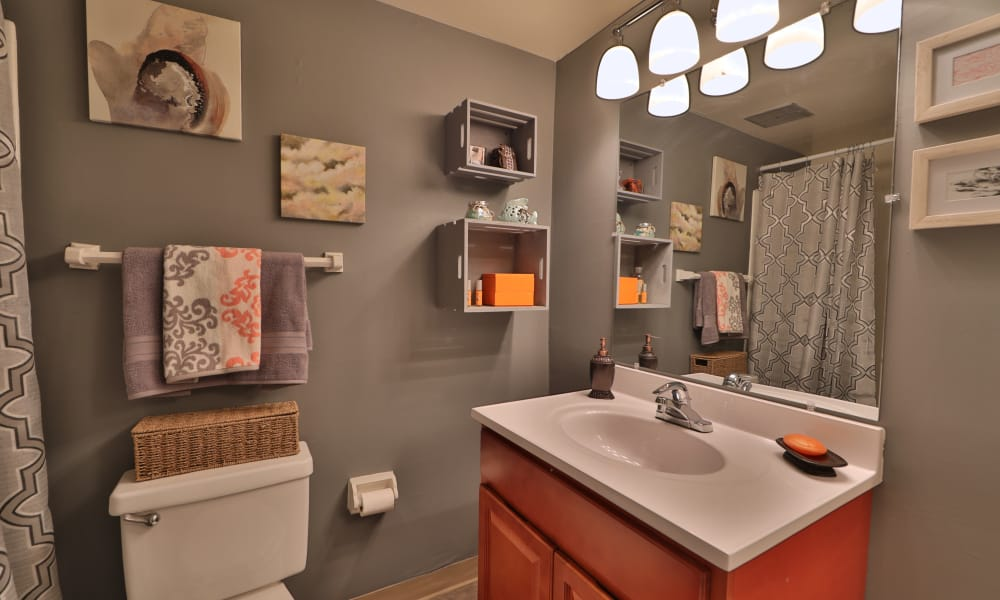 Briarwood Place Apartment Homes offers a bathroom in Laurel, Maryland