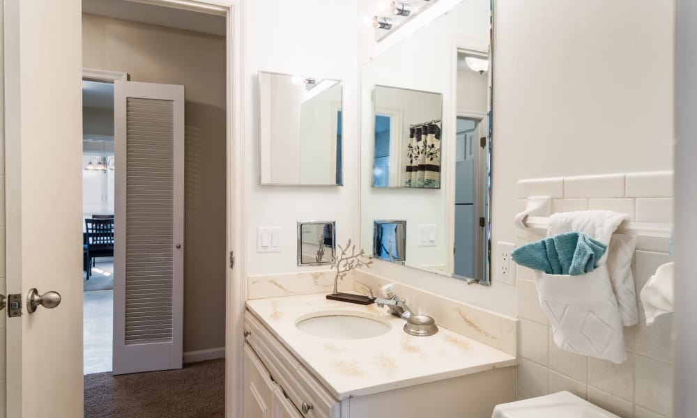Master bathroom at Regency Lakeside Apartment Homes