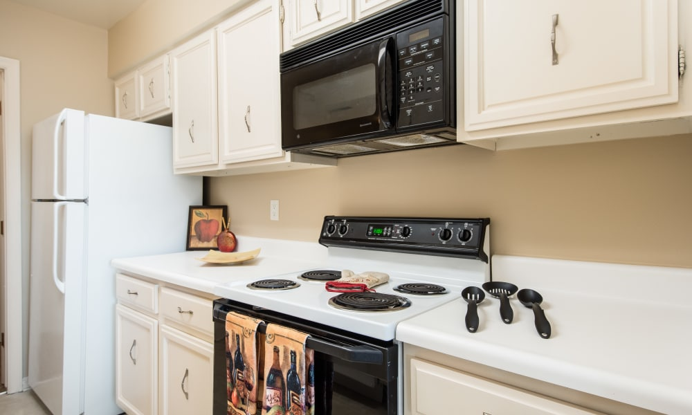 Updated kitchen at Regency Lakeside Apartment Homes