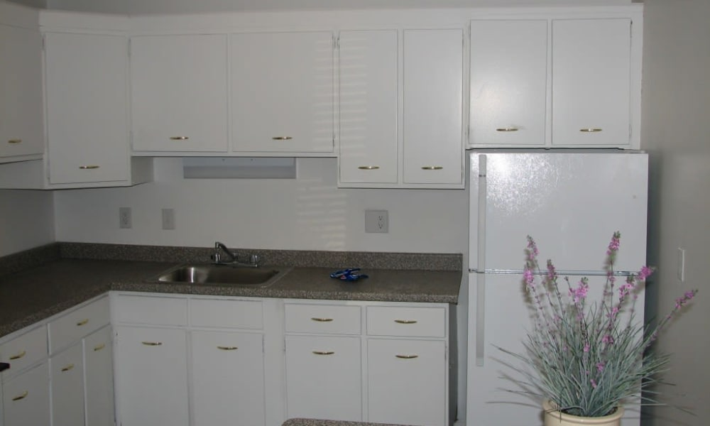 Modern kitchen at Springwood Gardens