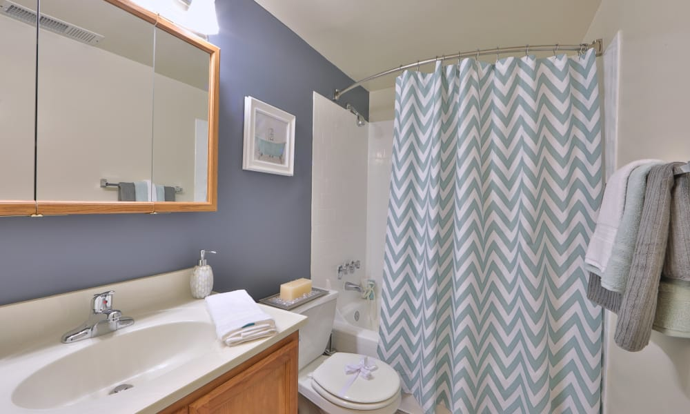 Beautiful bathroom at Taylor Park Apartment Homes in Nottingham, MD