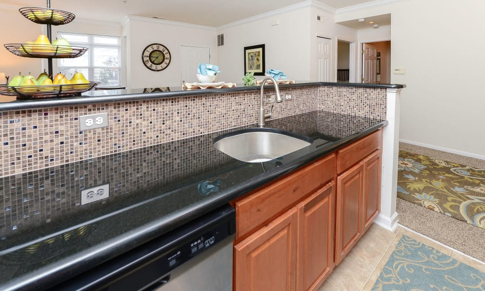 Enjoy a well equipped kitchen at Bishop's View Apartments & Townhomes