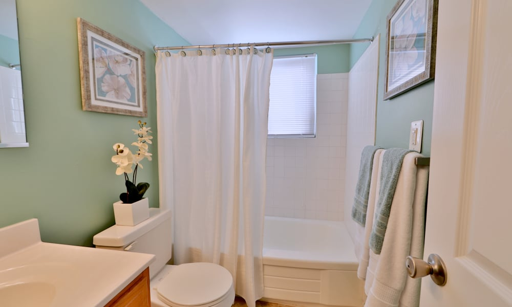 Bathroom at Gwynn Oaks Landing Apartments & Townhomes