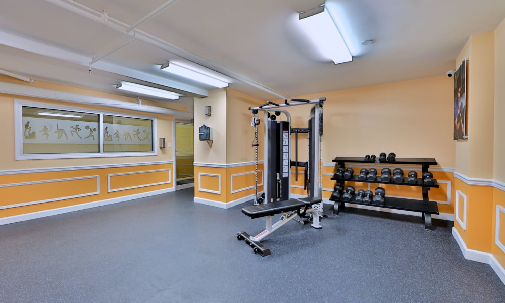 Kings Park Plaza Apartment Homes offers a fitness center in Hyattsville, Maryland