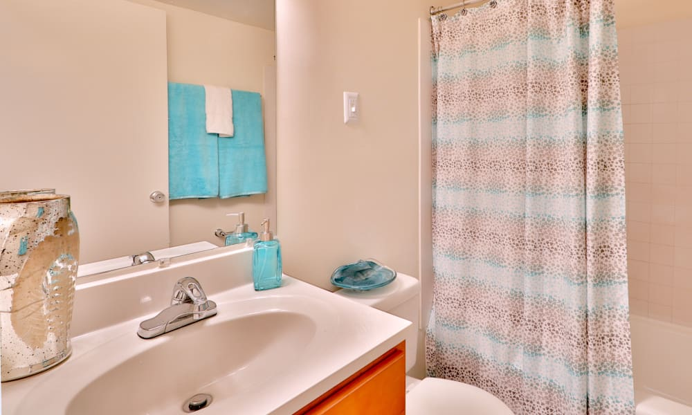 Spacious bathroomat Kings Park Plaza Apartment Homes in Hyattsville, Maryland