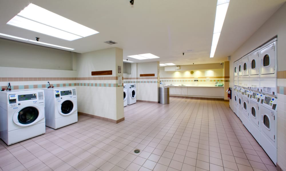 Large laundry room at Widdicombe Place in Etobicoke